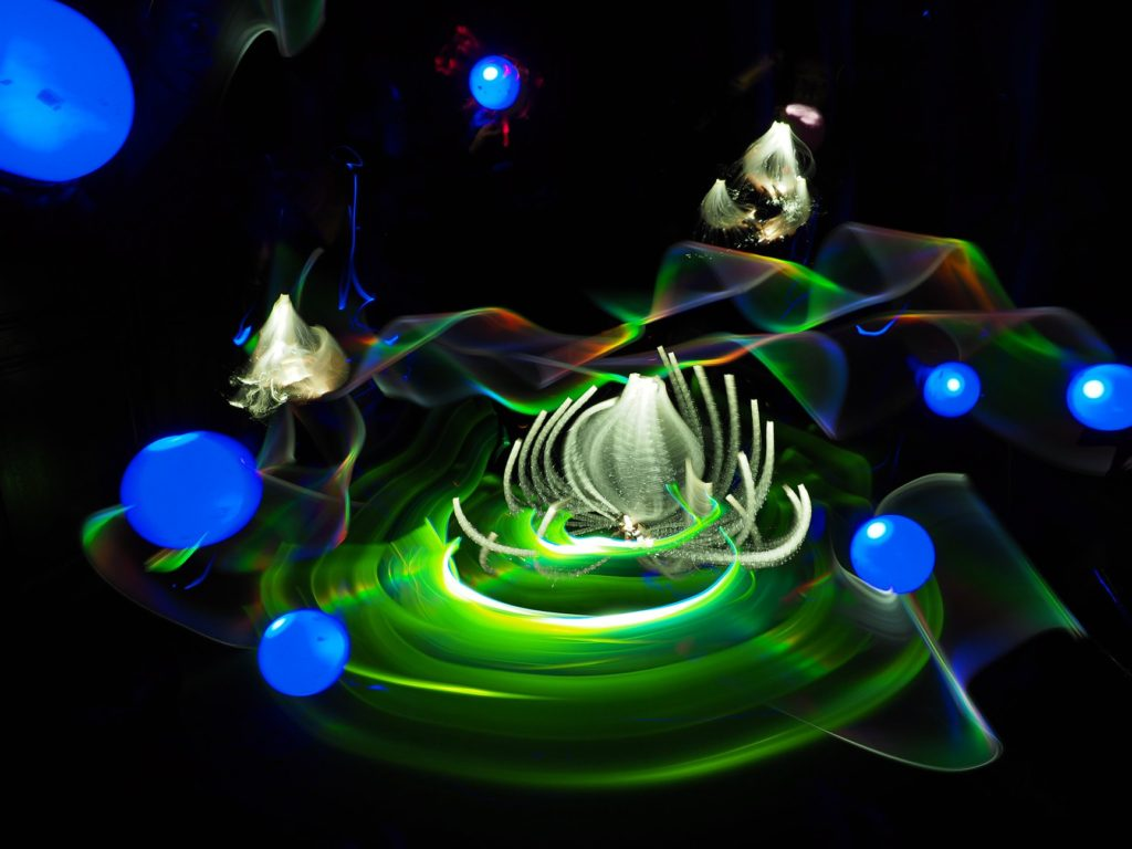 Light Painting Lilies by Chanette Manso