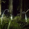 Light Painting Photography by artists Lightmark