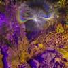 Light Painting Lens Swap Jake Saari 03