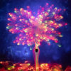 Light Painting Tree of Light by Jason D. Page