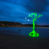 Light Painting by Rom