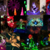Flower Light Painting Contest Entries